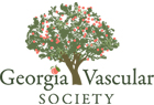 georgiavascularsociety19-apvs