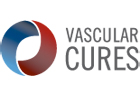 vascularcures17-apvs